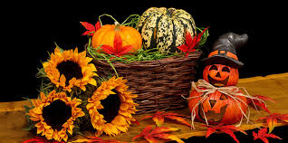 Image result for halloween fall images